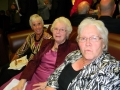 AOHA 2014 AGM Reception evening (13) (Medium)